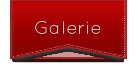 Webdesign galerie
